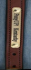 PonyUP-Kentucky-Brass-Nameplates-New6-e1306242808747