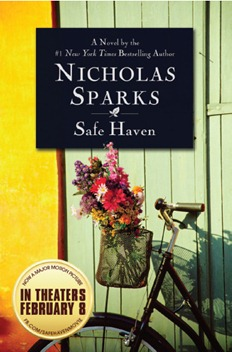 SafeHavenBook
