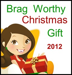 Christmasgift2012final