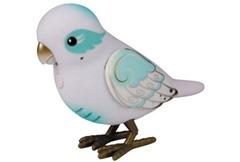 28006_LLPS1_PP_BirdSinglePk_Angela_OOP_LEFT