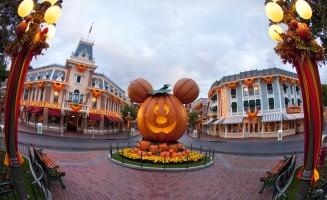 Halloween-Time-10_10_DL_00569.jpg