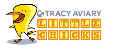 Little-Chicks-logo-for-web