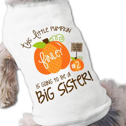 pumpkin_dog_shirt__67921.1409512763.451.416
