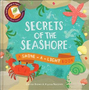 0006657_secrets_of_the_seashore_300