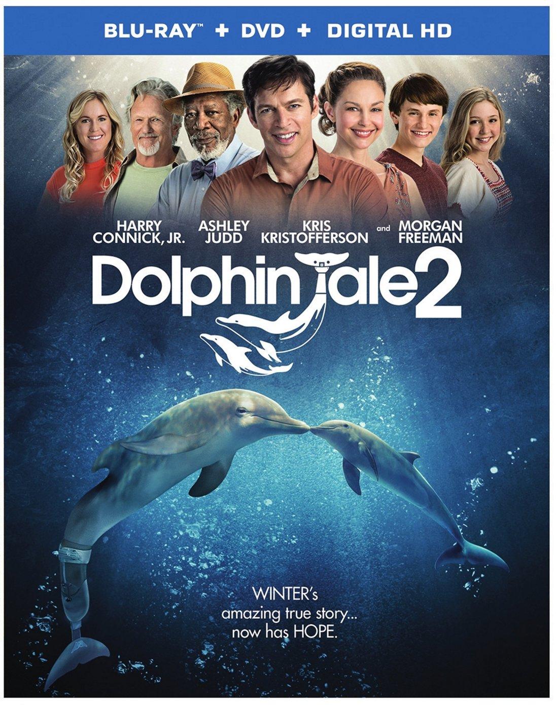 Dolphin Tale 2 Box Art_Flat