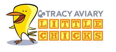 Little-Chicks-logo-for-web