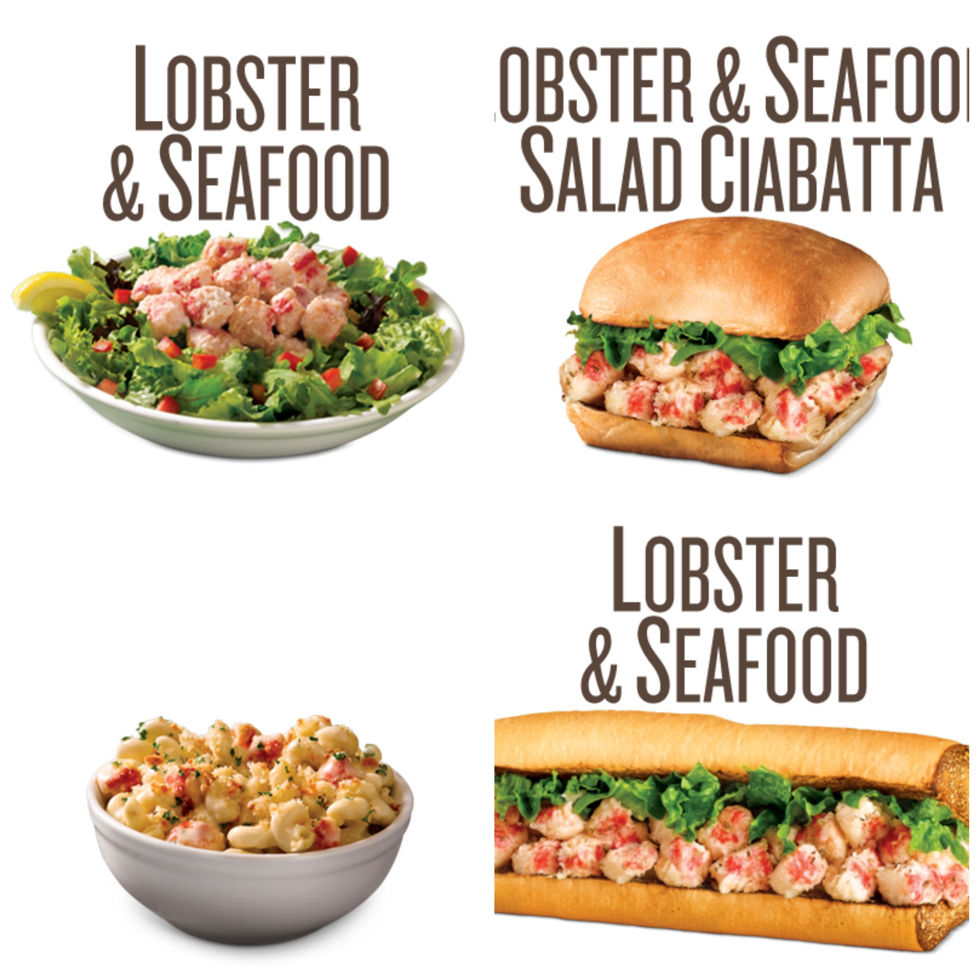 Cheese, Lobster & Seafood Salad Ciabatta, Lobster & Seafood Sandwich ...