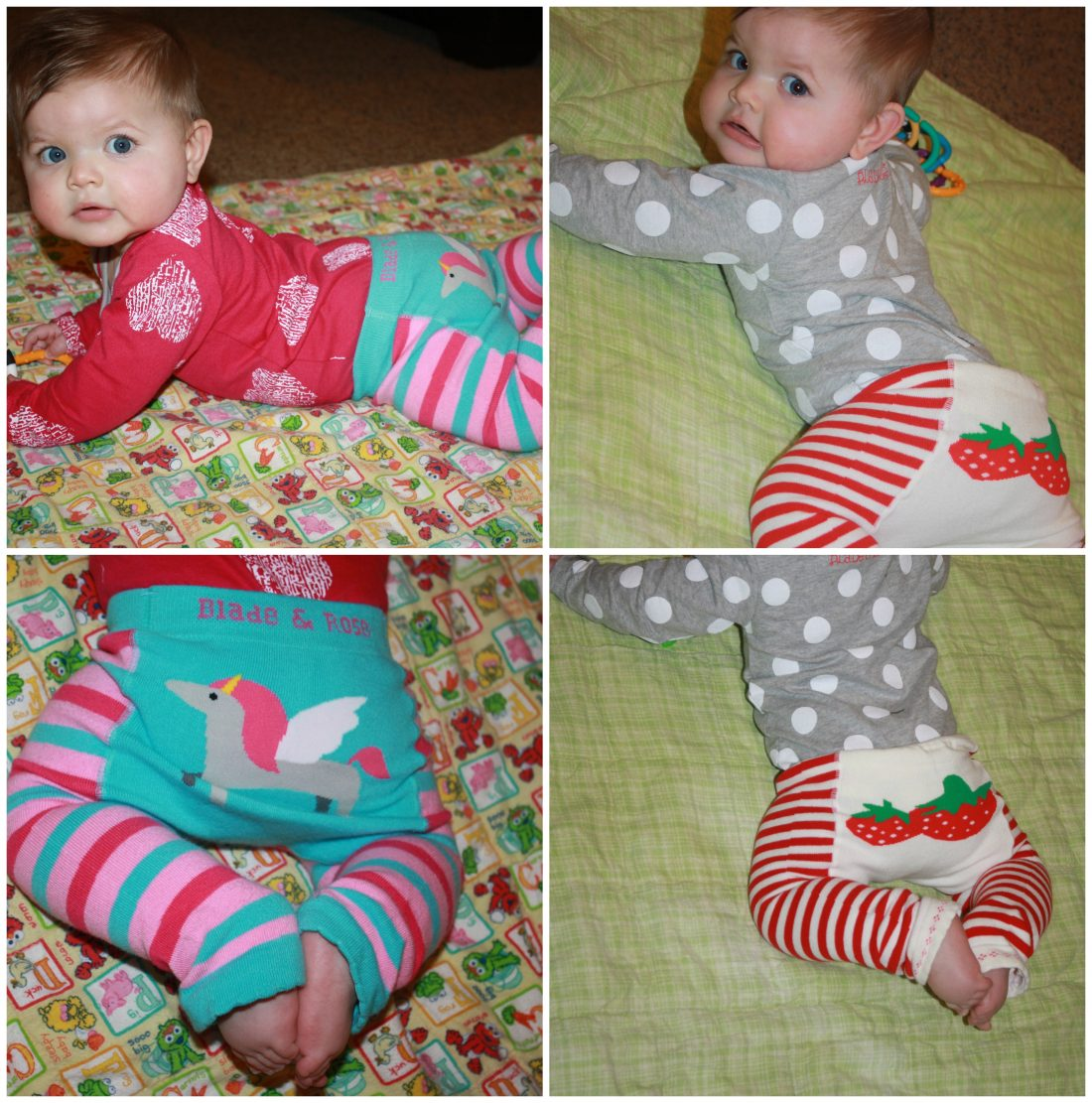 Blade rose cute tights and clothing for little ones Kids in mind
