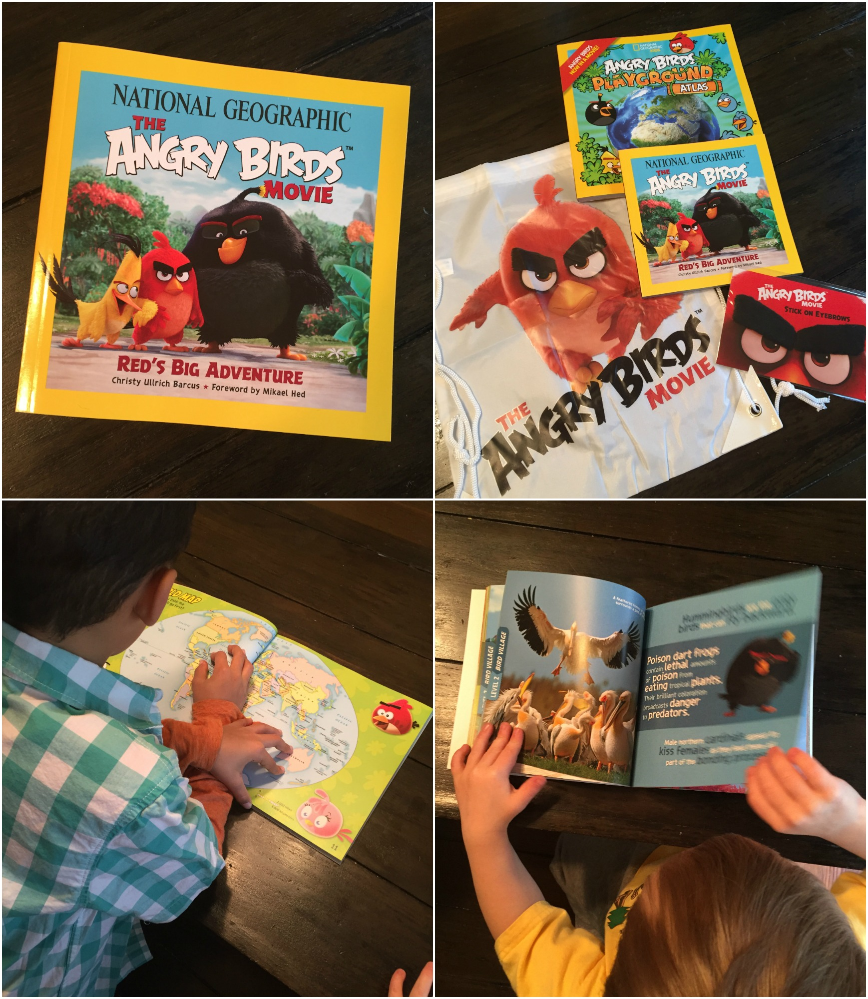 National Geographic Kids The Angry Birds Children's Books