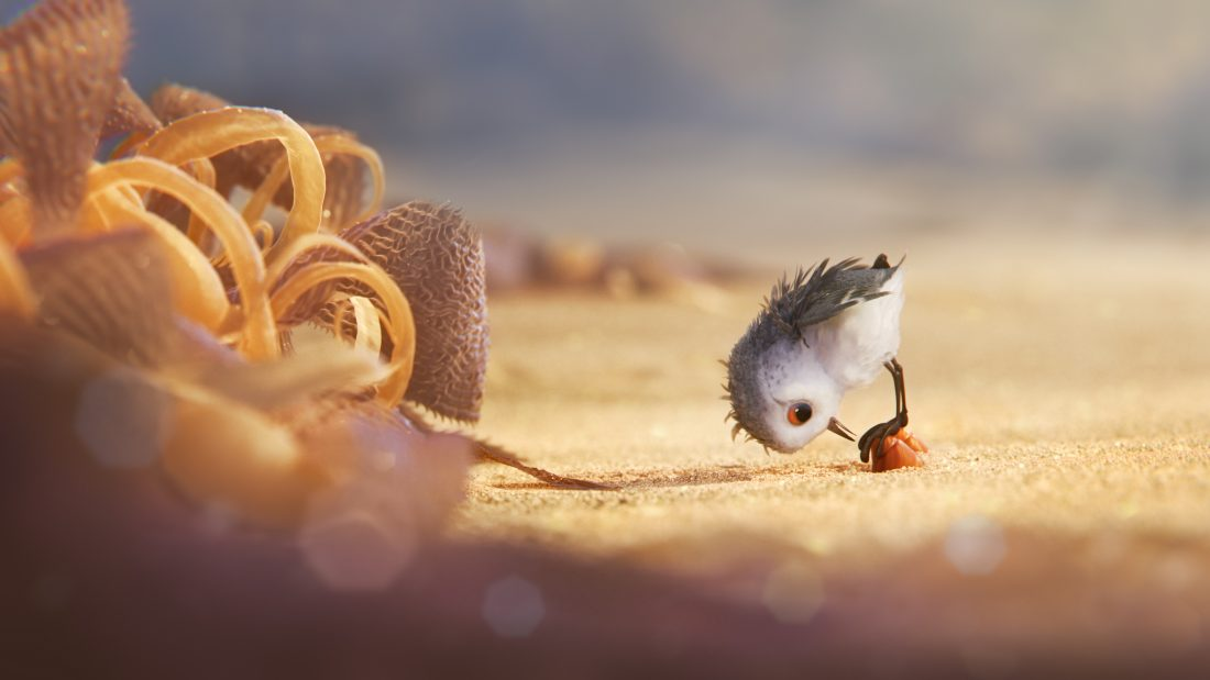 "BIG ADVENTURE — A hungry sandpiper hatchling ventures from her nest for the first time to dig for food by the shoreline in ""Piper,"" a new short from Pixar Animation Studios. Directed by Alan Barillaro (supervising animator ""WALL•E,"" ""Brave""), ""Piper"" debuts in theaters on June 17, 2016, in front of ""Finding Dory."" ©2016 Disney•Pixar. All Rights Reserved."