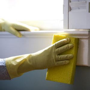 Professional and Affordable Cleaning Services