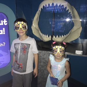 Visiting The SEA LIFE Aquarium Arizona + Get $5 off Admission Until Thanksgiving