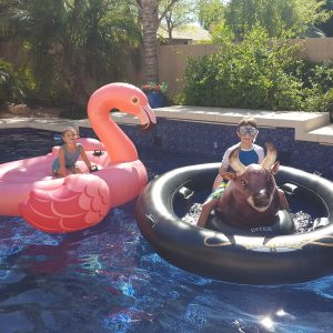 Fun MUST HAVE Pool Floats for 2017! + INFLATABULL Pool Toy Giveaway