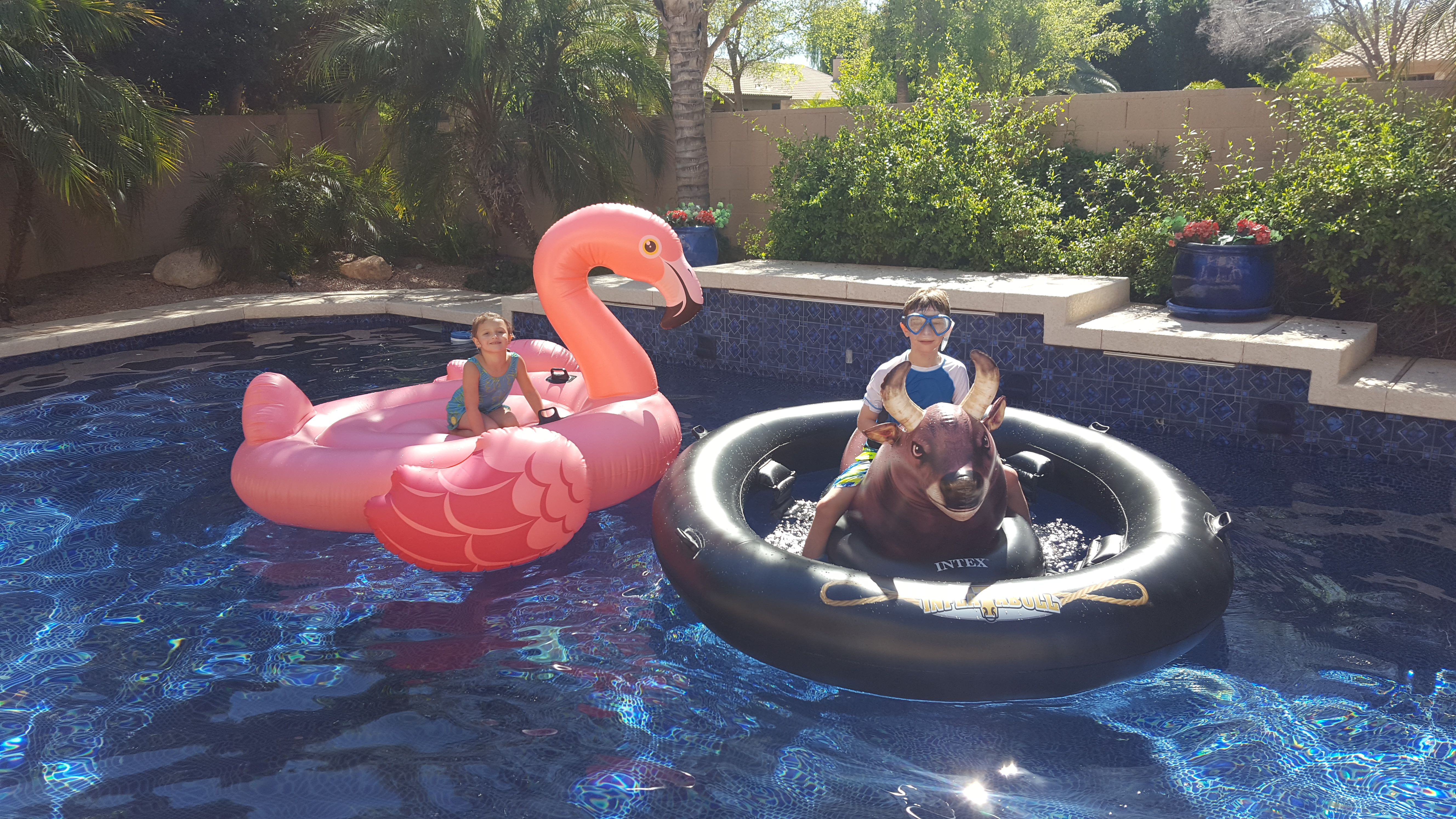 Fun Must Have Pool Floats For 2017 Inflatabull Pool Toy