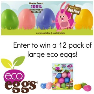 eco eggs Environmentally Friendly Easter Eggs and Grass Review and Giveaway!