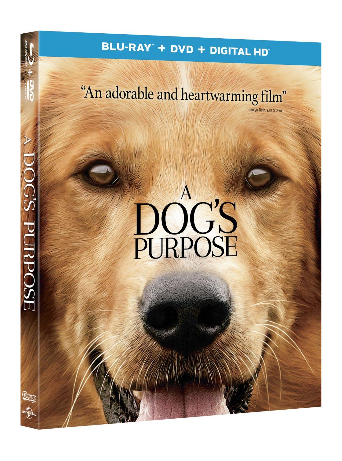 A Dog S Purpose Blu Ray Dvd Digital Hd