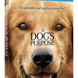 A Dog's Purpose Blu-ray Giveaway (4 Win!) #ADogsPurpose