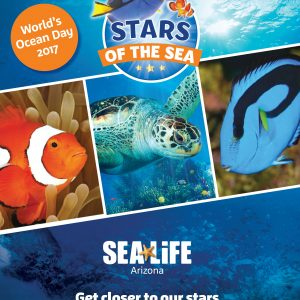 Celebrate World Oceans Day at SEA LIFE Arizona Aquarium June 8th! Get $5 Off