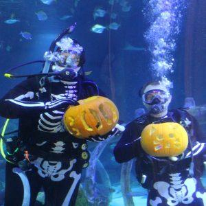 Fun Halloween Events at LEGOLAND Discovery Center Arizona & SEA LIFE Arizona Aquarium