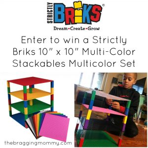 {Brag Worthy Christmas} Strictly Briks Unique Building Sets Review and Giveaway!