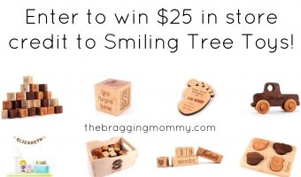 {Brag Worthy Christmas} Smiling Tree Toys Handmade Wood Toys and Home Decor Review, Discount, and Giveaway!